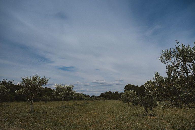 Hochzeitsfotografie Provence- Destination Hochzeit- Willkommen in der Provence