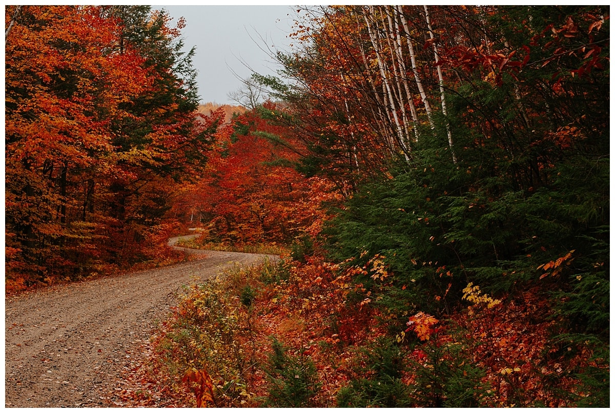 Reisefotografie_USA_Indian Summer_15_Road