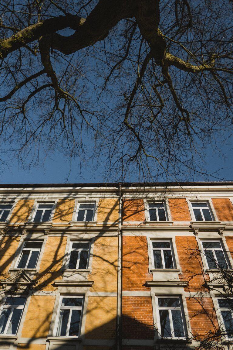 eine Häuserfassade von unten fotografiert, blauer Himmel, die Sonne scheint, ein Baum ist von unten zu sehen