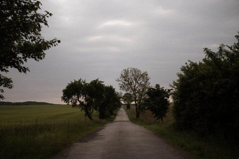 Eine Straße in Mecklenburg- Vorpommern, bewölkter Himmel, Bäume am Straßenrand