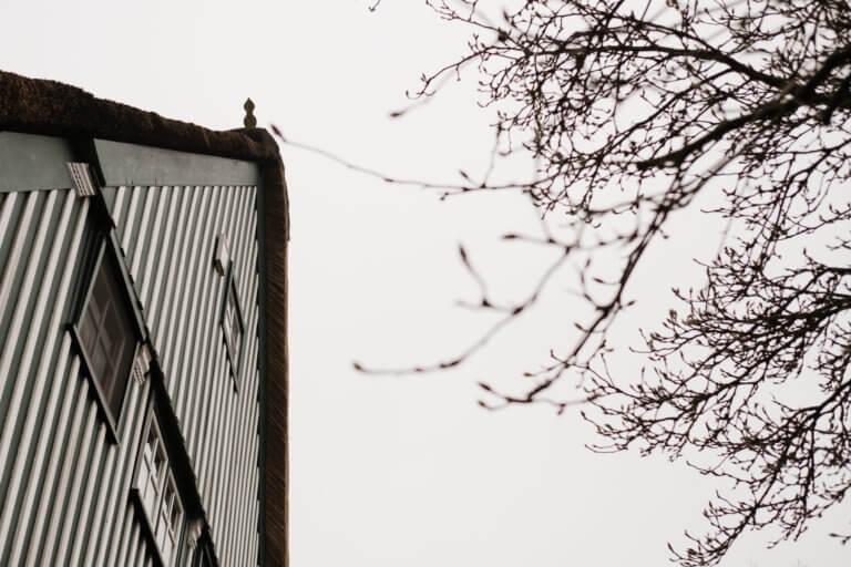 eine Dachgiebel eines Landhauses, neben dem Haus steht ein kahler Baum, das Landhaus hat eine weiß/ grüne Holzoptik